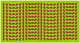 Optical-Illusion.. Now you see me and now you don't :)
